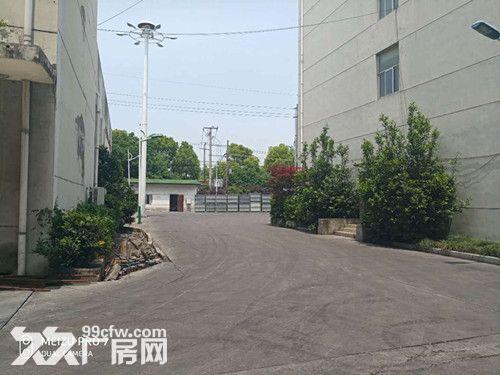 青浦104绿证单层有行车牛腿4200平厂房-图(7)