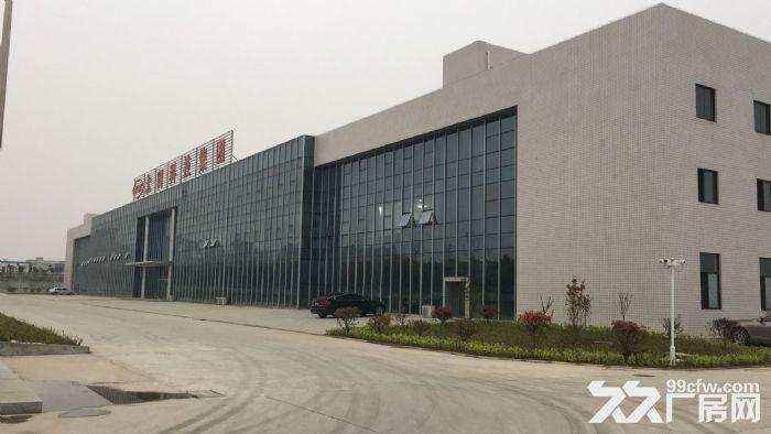 全新钢结构厂房招租或寻求合作经营-图(1)