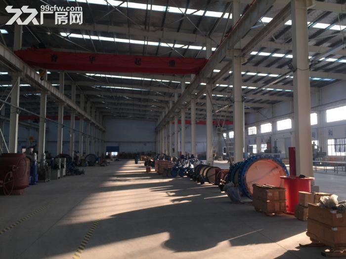 全新钢结构厂房招租或寻求合作经营-图(4)