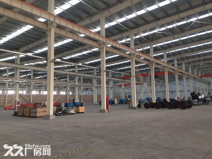 全新钢结构厂房招租或寻求合作经营-图(6)