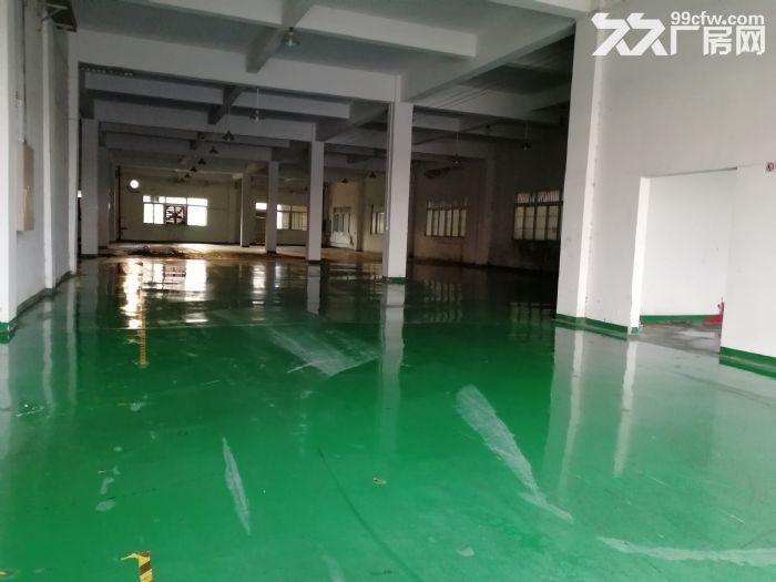 狮山3层独门独院厂房招租4500平方-图(1)