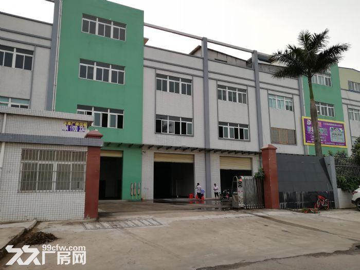 狮山3层独门独院厂房招租4500平方-图(3)