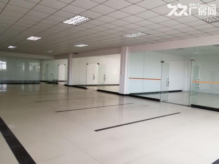 狮山3层独门独院厂房招租4500平方-图(4)