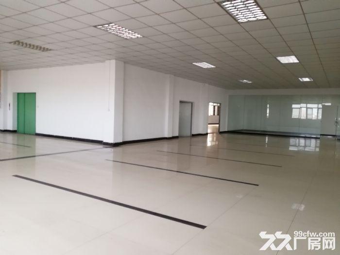 狮山3层独门独院厂房招租4500平方-图(6)