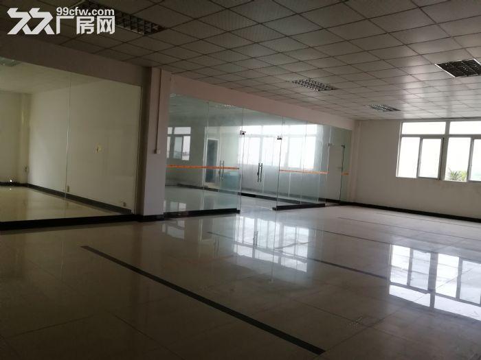 狮山3层独门独院厂房招租4500平方-图(7)