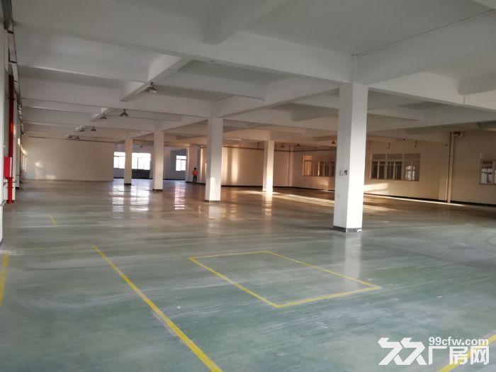 狮山3层独门独院厂房招租4500平方-图(8)