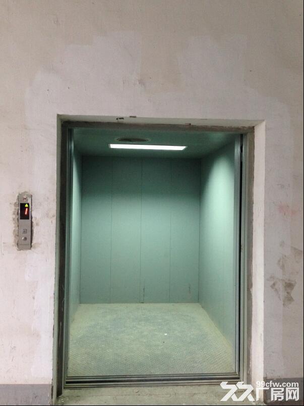 厂房3032平米,有办公房、电梯可分租价格面议-图(4)