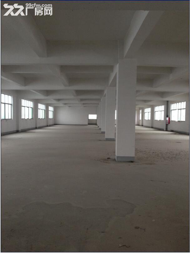 厂房3032平米,有办公房、电梯可分租价格面议-图(6)