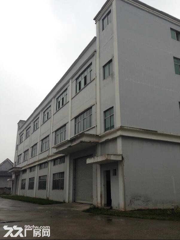 厂房3032平米,有办公房、电梯可分租价格面议-图(8)