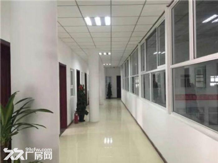 通州马驹桥金桥产业园1500平库房,高10米-图(3)