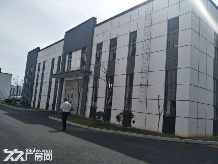 出租九龙科创园新建厂房-图(2)