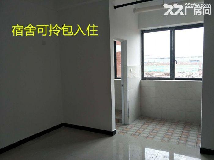 出租九龙科创园新建厂房-图(3)