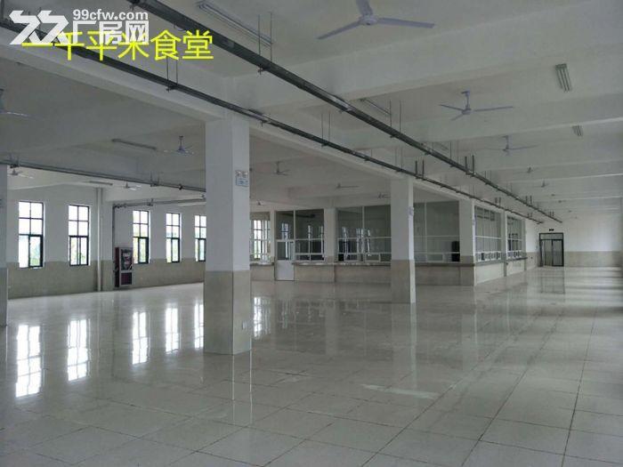 出租九龙科创园新建厂房-图(4)