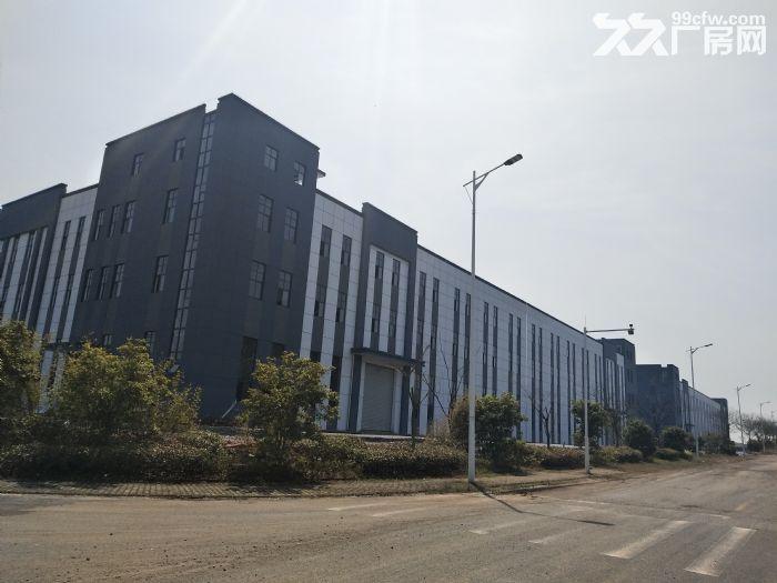 出租九龙科创园新建厂房-图(6)