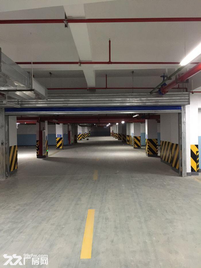 拱墅区科技工业功能区82680方标准厂房出租-图(3)