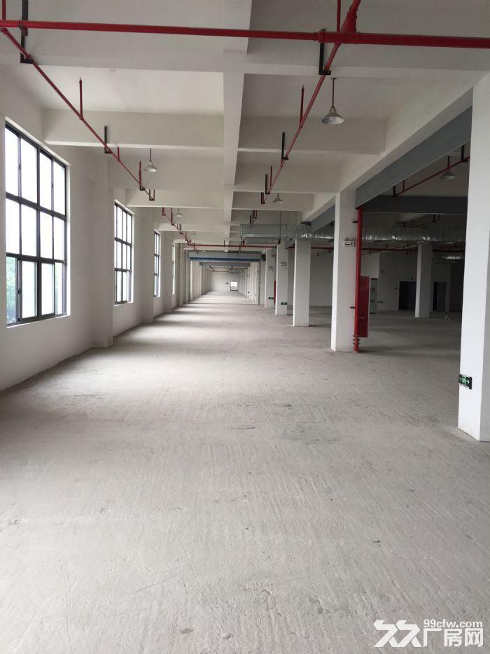 拱墅区科技工业功能区82680方标准厂房出租-图(6)