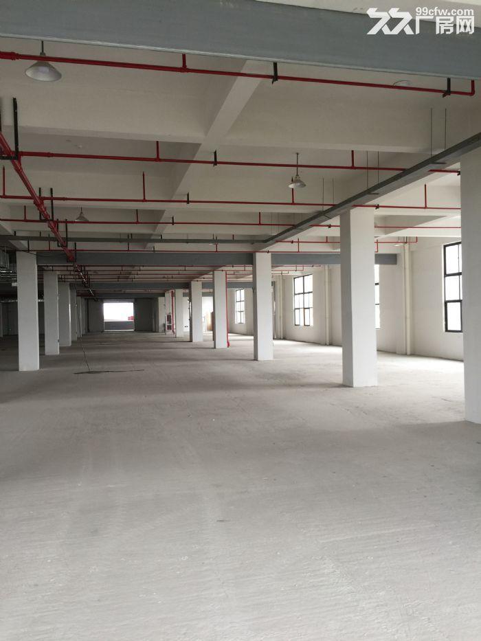 拱墅区科技工业功能区82680方标准厂房出租-图(7)