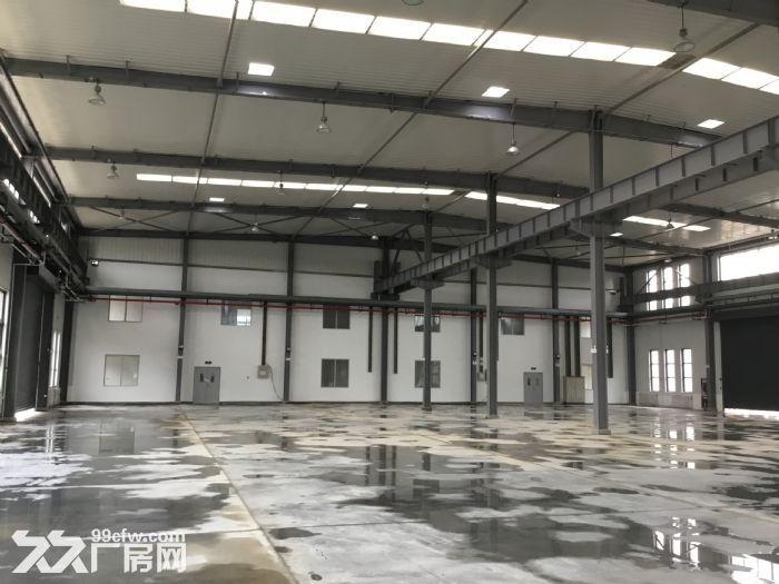 租售50年产权全新厂房-图(4)