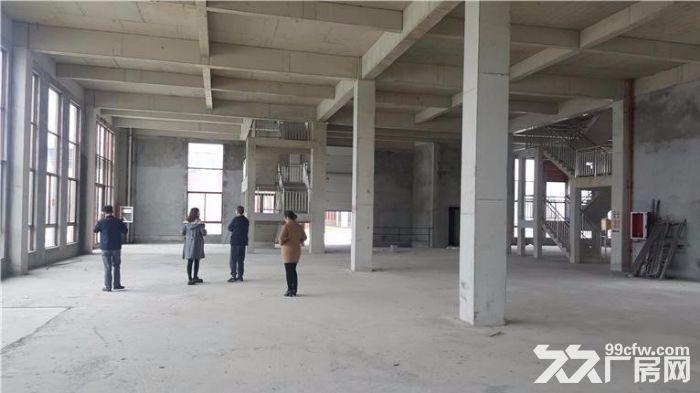 首层8.1米二层4.2米四层框架厂房出售带三证可按揭-图(6)