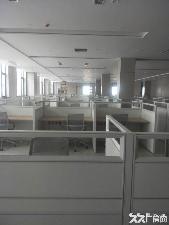 龙泉经开区1000至5000平米工业园标准厂房出租-图(1)