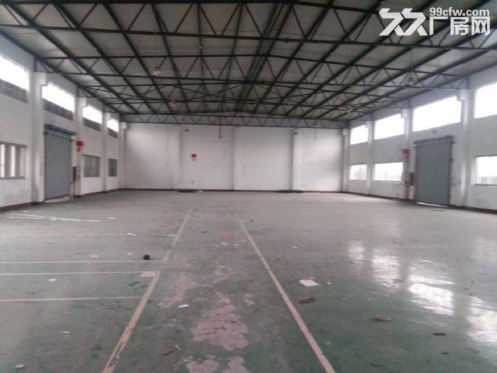 车墩工业区320平米单层厂房出租-图(4)