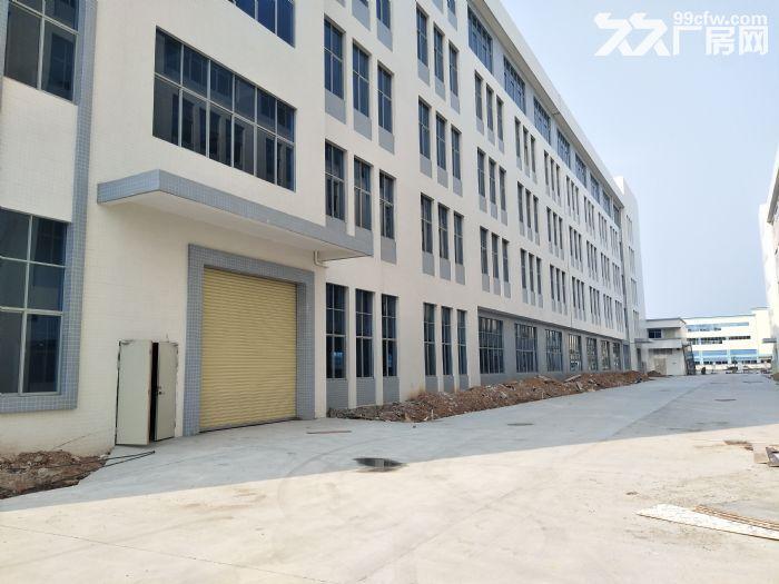 惠东独院红本厂房7500平方-图(1)