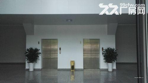 自贸区保税区全新业态综合楼宇项目租售,跨境电商仓库42-图(3)