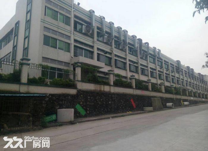 东城牛山工业区48000平方高标准厂房出租-图(2)
