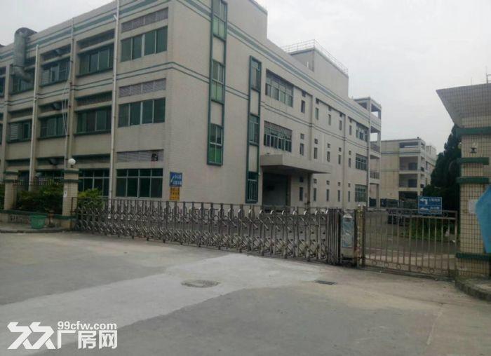东城牛山工业区48000平方高标准厂房出租-图(4)