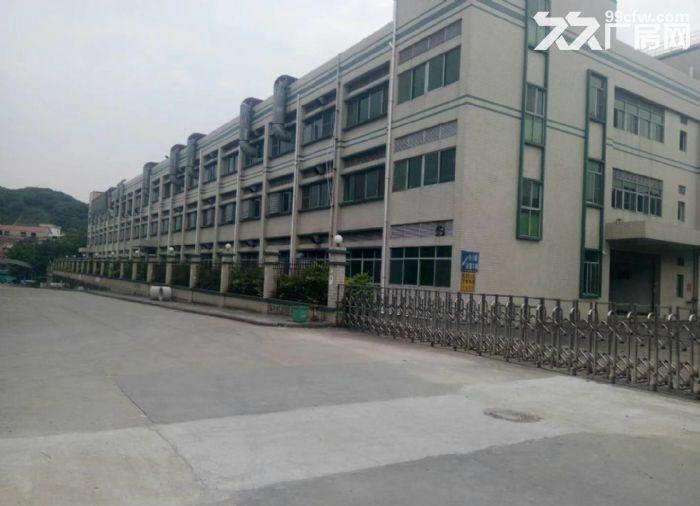东城牛山工业区48000平方高标准厂房出租-图(3)