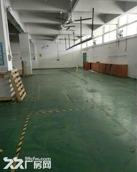 东城牛山工业区9成新厂房3000平方出租-图(4)