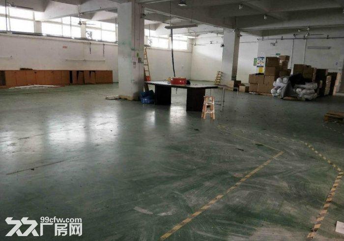 东城牛山工业区9成新厂房3000平方出租-图(3)