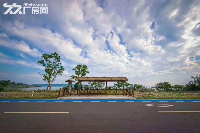 不限购吴中太湖可以让你多活十年的房子真实照片视频随时看房自住投资首选-图(7)