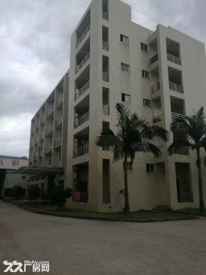 2500平方5层办公楼出租可做仓库,出租6亩空地交通便利-图(6)
