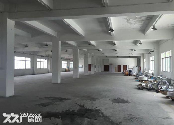 原房东一楼5米高1200平米厂房出租-图(2)