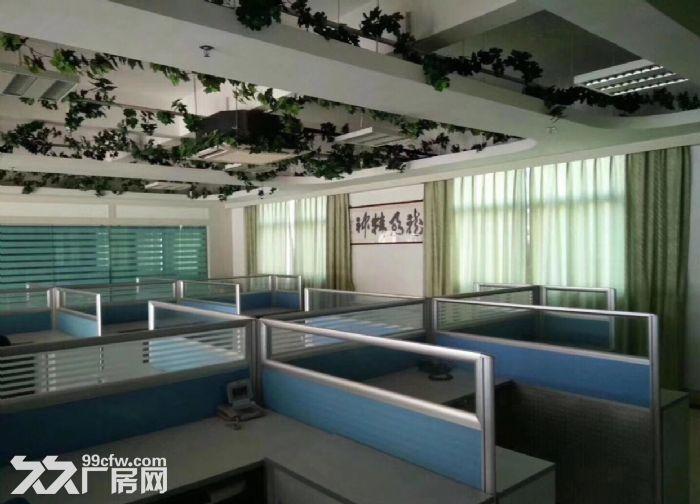 原房东一楼5米高1200平米厂房出租-图(4)