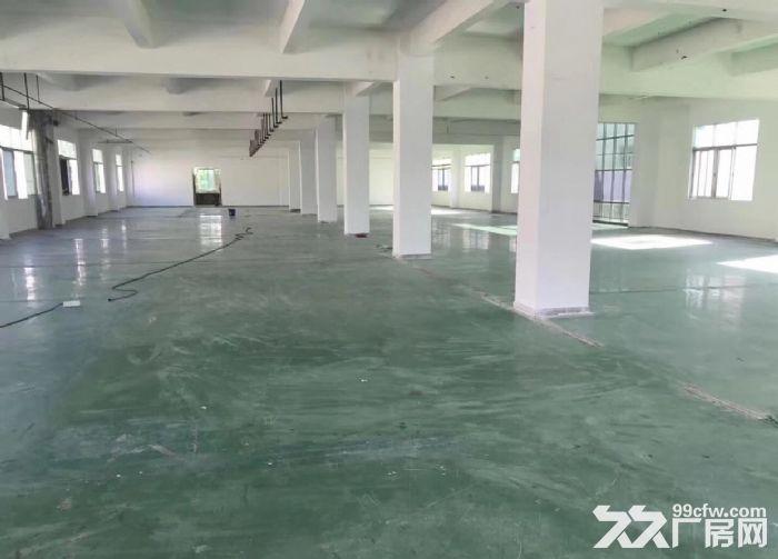 原房东一楼5米高1200平米厂房出租-图(5)