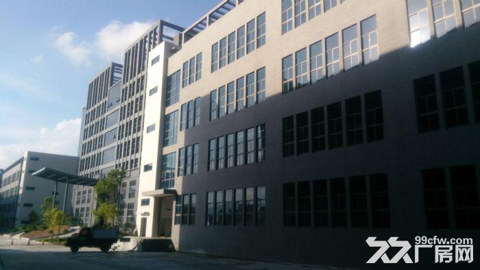惠东全新工业园标准厂房面积五万平米,可分租-图(1)
