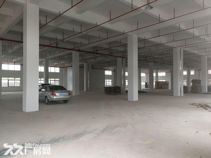 惠东全新工业园标准厂房面积五万平米,可分租-图(2)
