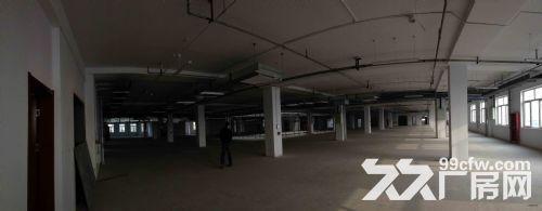 自贸区保税区全新业态综合楼宇项目租售,跨境电商仓库-图(1)