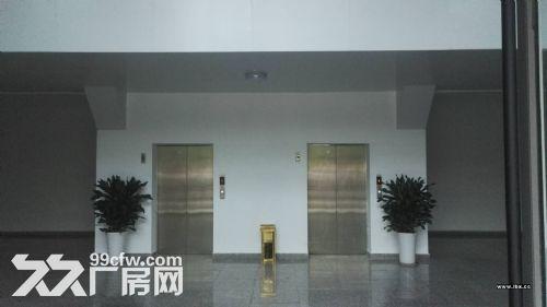 自贸区保税区全新业态综合楼宇项目租售,跨境电商仓库-图(3)