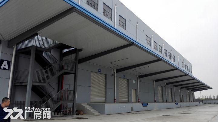 上海松江大港单层标准高平台库出租-图(1)