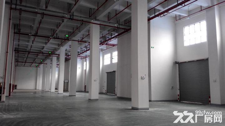 上海松江大港单层标准高平台库出租-图(2)