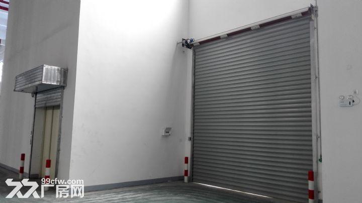 上海松江大港单层标准高平台库出租-图(3)