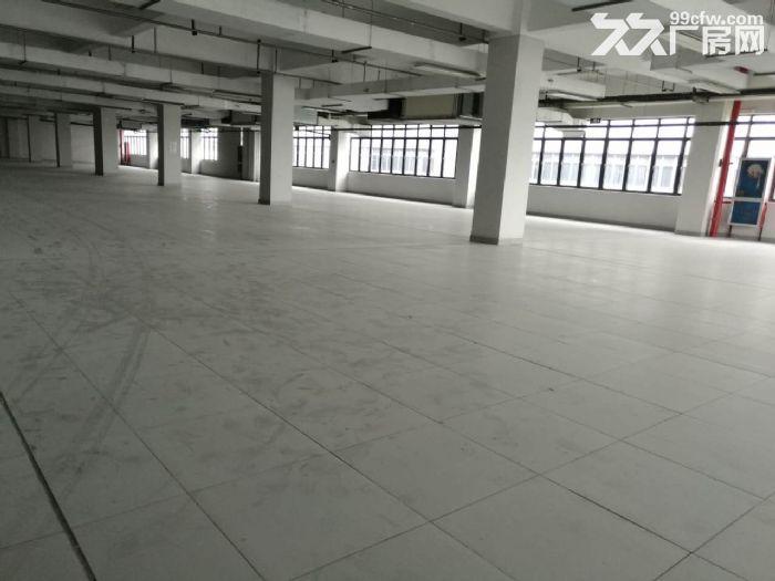 四季青档口看过来服装设计展厅类集聚环境超好起租500方-图(2)