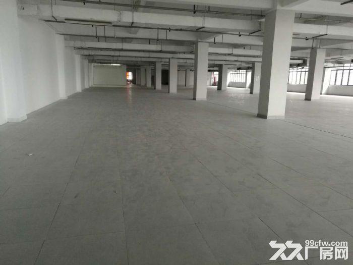四季青档口看过来服装设计展厅类集聚环境超好起租500方-图(3)