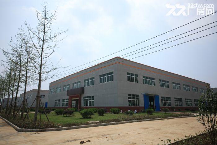 云梦县黄香家电园厂房招租-图(3)