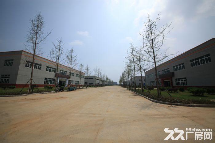 云梦县黄香家电园厂房招租-图(4)