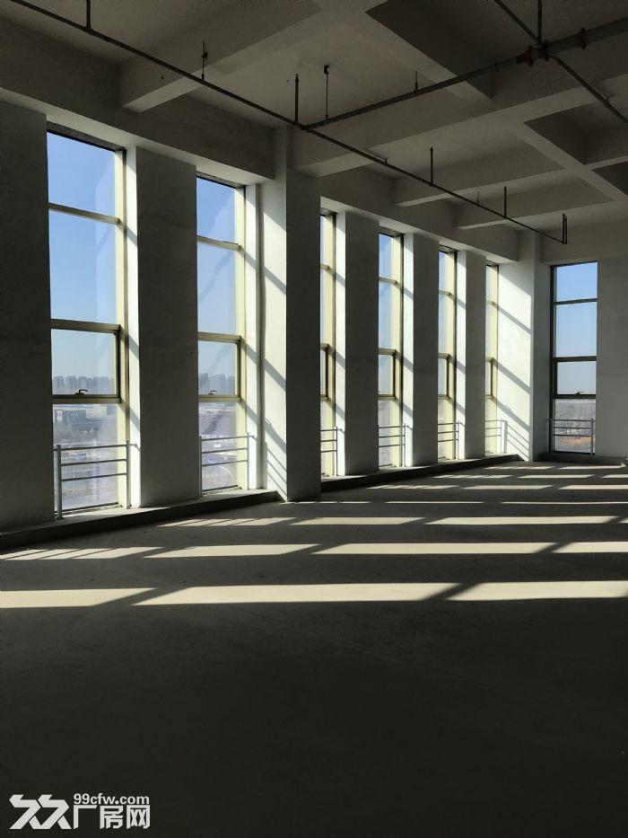 (出租)西青赛达主路边的整层科研厂房,办公生产均可,可考察-图(4)