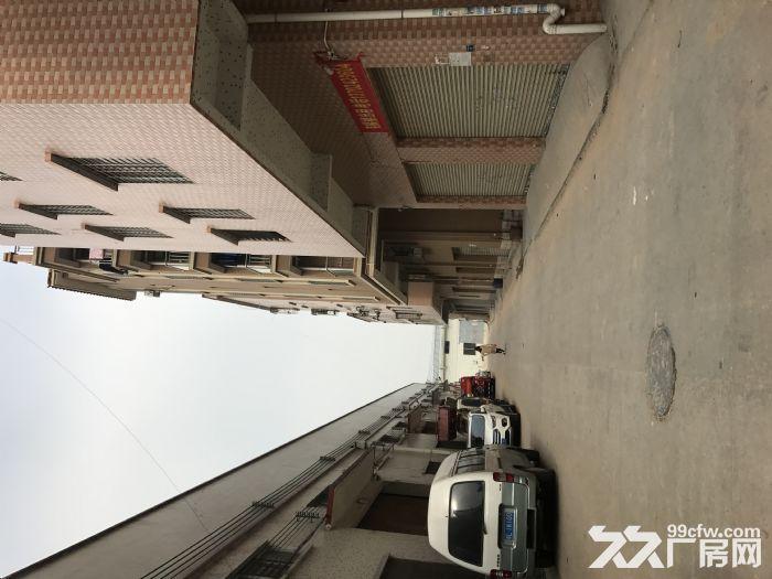 金沙洲电梯厂房出租−新八层200平米/层/1600平米-图(2)